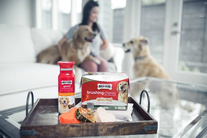 PET HEALTH WITH MILK-BONE - KEEP YOUR PET HEALTHY WITH MILK-BONE by popular Houston lifestyle blogger The Styled Fox